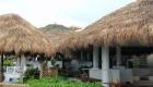 Hotel Tiki Huts & Tiki Bars