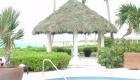 Tampa Hotel Tiki Huts & Tiki Bars