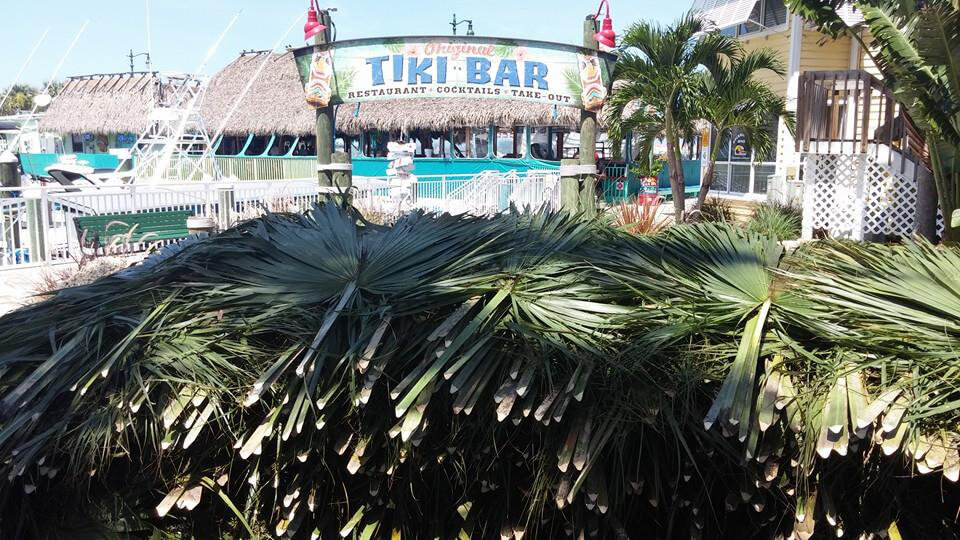 Tiki Hut Re-Thatching